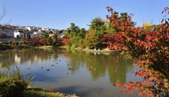 香里団地以楽公園-団地の輝きを語り伝える日本庭園